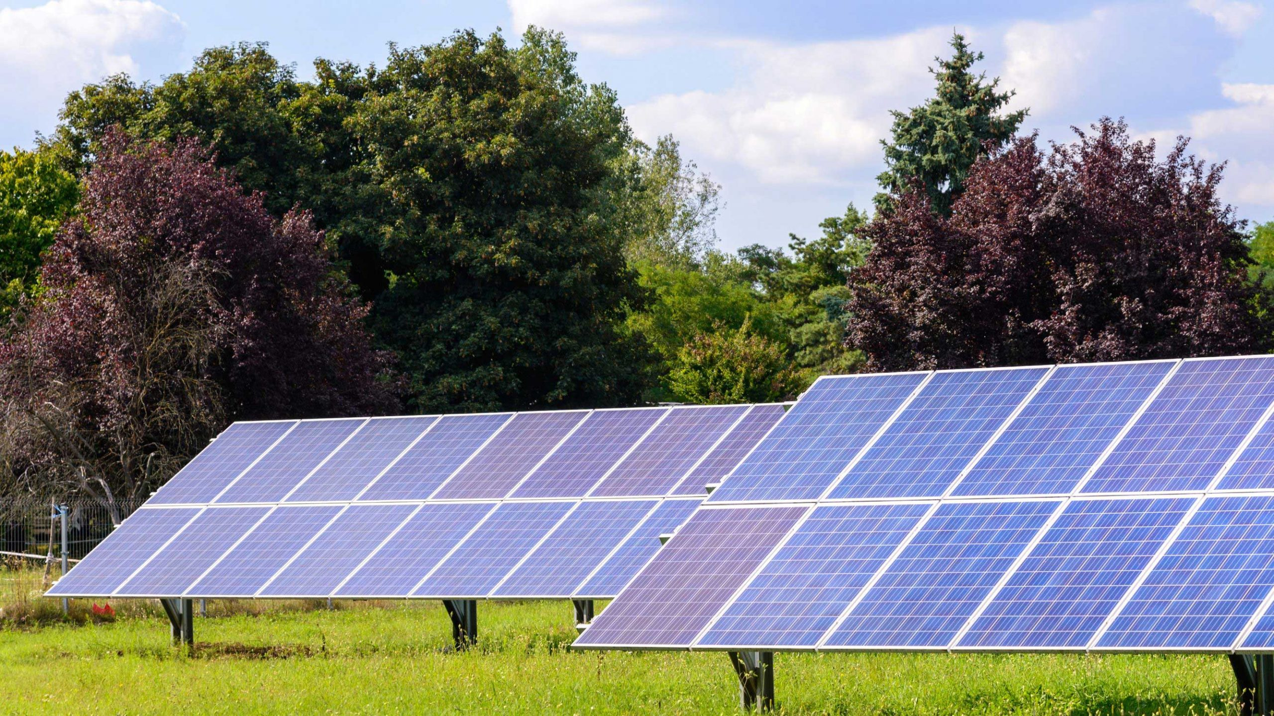 Shaded Roof? Ground-Mounted Solar is the Solution